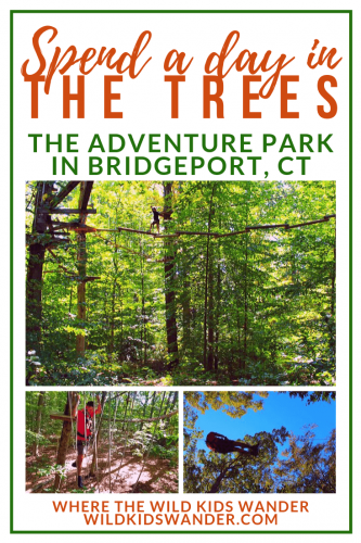 The Adventure Park In Connecticut A Review Of A Treetop Adventure Park Where The Wild Kids Wander